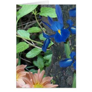 Blue Iris with Daisy Mums Card