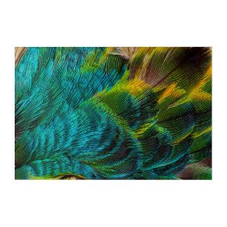 Blue Irridescent Feather Design Acrylic Print