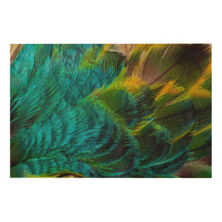 Blue Irridescent Feather Design Wood Wall Art