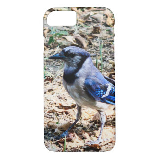 Blue Jay 2 iPhone 8/7 Case