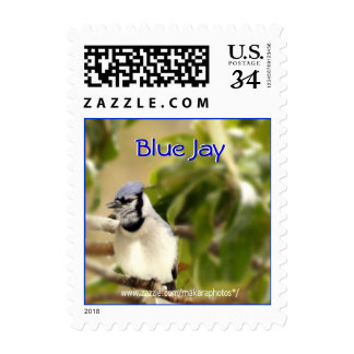 Blue Jay 6435 Stamp- customize Postage