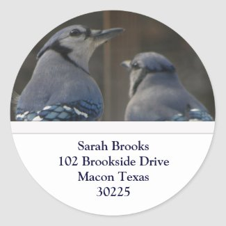 Blue Jay Address Labels Sticker