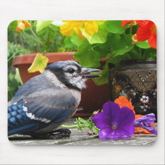 Blue Jay and Flowers Mousepad
