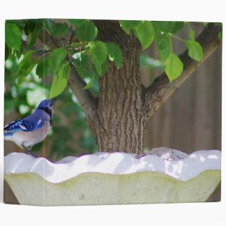 BLUE JAY AT BIRD BATH BINDER