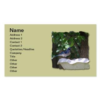 BLUE JAY AT BIRD BATH BUSINESS CARD