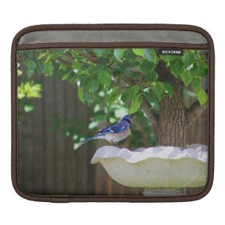 BLUE JAY AT BIRD BATH iPad SLEEVE