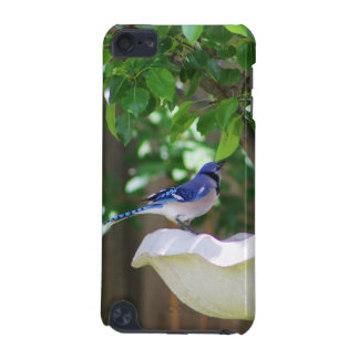 BLUE JAY AT BIRD BATH iPod TOUCH (5TH GENERATION) COVER