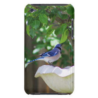 BLUE JAY AT BIRD BATH iPod TOUCH Case-Mate CASE
