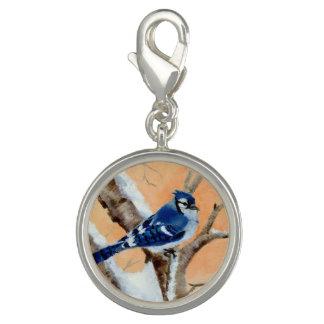 Blue Jay At Sunset Charm