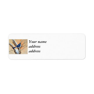 Blue Jay At Sunset Label