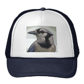 Blue Jay Bird Hats