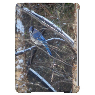 Blue Jay Bird in Winter Trees Cover For iPad Air