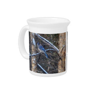 Blue Jay Bird in Winter Trees Pitcher