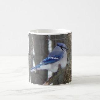 Blue Jay Bird Lover Collection Coffee Mug