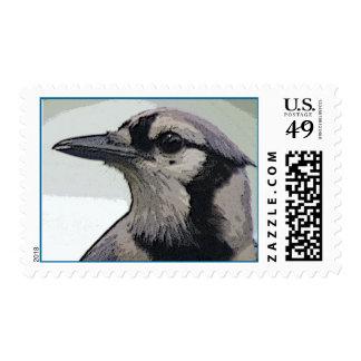 Blue Jay Bird Postage