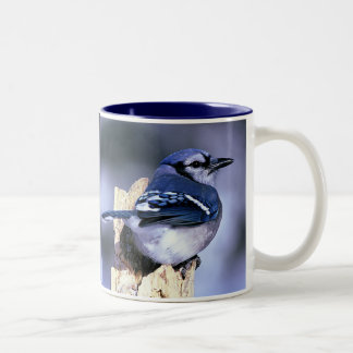 Blue Jay, Blue Jay Two-Tone Coffee Mug