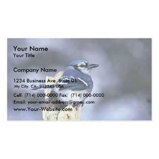 Blue jay business card