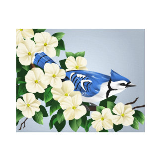 Blue Jay Canvas Art Prints
