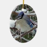 Blue-Jay Christmas Christmas Tree Ornaments