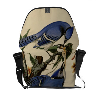 Blue Jay Courier Bags