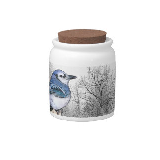 Blue Jay Drawing Candy Dishes