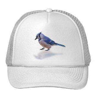 Blue Jay Trucker Hats