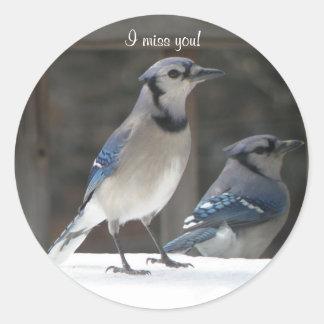 Blue Jay: I Miss You Sticker