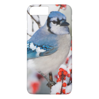 Blue Jay in Common Winterberry iPhone 8 Plus/7 Plus Case