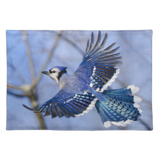 Blue Jay in Flight Placemat