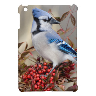Blue Jay in Nandina Heavenly Bamboo Case For The iPad Mini