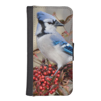 Blue Jay in Nandina Heavenly Bamboo Wallet Phone Case For iPhone SE/5/5s