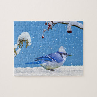Blue Jay in the Snow Puzzle Jigsaw Puzzle