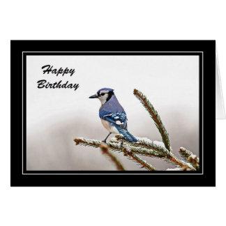 Blue Jay in Winter Birthday Card