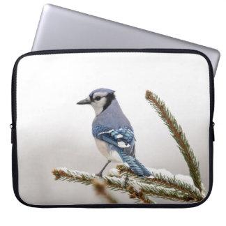 Blue Jay in Winter Laptop Sleeve