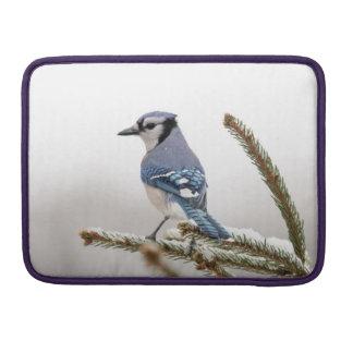 Blue Jay in Winter Sleeve For MacBooks