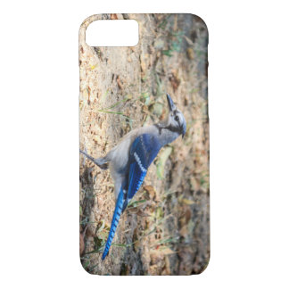 Blue Jay iPhone 8/7 Case