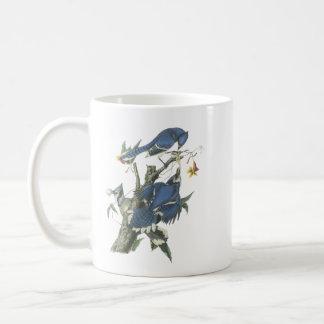 Blue Jay, John Audubon Mug