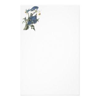 Blue Jay, John Audubon Personalized Stationery
