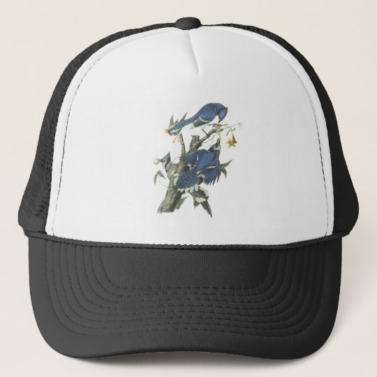 Blue Jay, John Audubon Trucker Hat