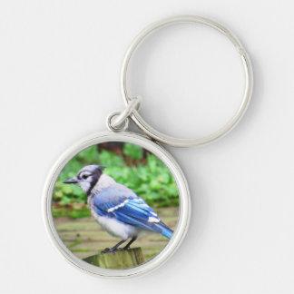 Blue Jay Key Chain