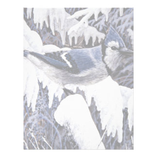 Blue jay letterhead