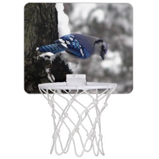 Blue Jay Mini Basketball Hoops