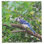 Blue Jay Napkin