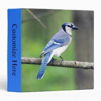 Blue Jay One Touch EZD™ Ring Avery Binder