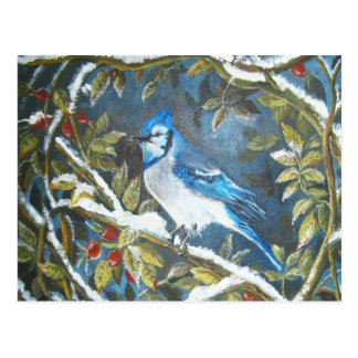 Blue jay painting postcard