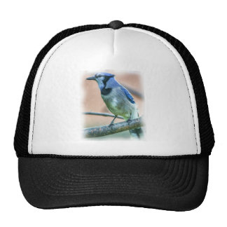 Blue Jay Perched On Branch With Delicate Dark Feet Trucker Hat