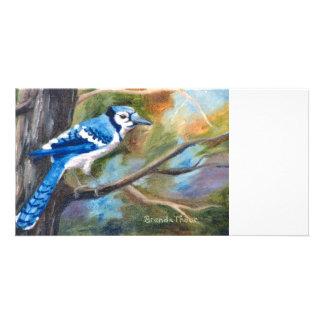 Blue Jay Photo Card