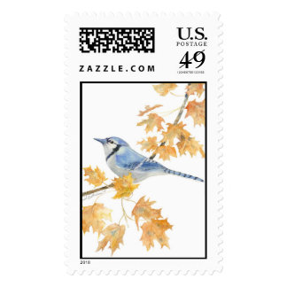 blue jay  stamps