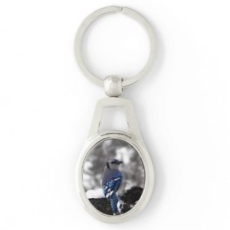 Blue Jay Silver-Colored Oval Keychain