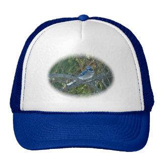 Blue Jay Songbird (Cyanocitta cristata) Trucker Hat